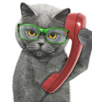 Looking for someone to talk to in the middle of the night. If the topic is cat food, try giving Chewy's new call center a ring.