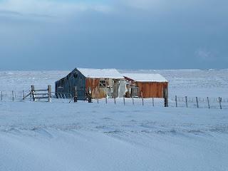 De viajeros por las Islas Malvinas o Falkland Islands 6