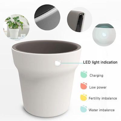 Xiaomi Flower Pot