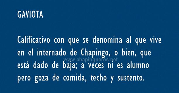 Gaviotas Chapingo