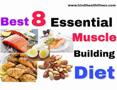 best muscle building diet