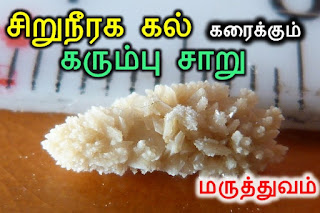 Siruneeraga kal karaiya iyarkai maruthuvam, siruneega kolaru, Natural Treatment for Kidney stone, சிறுநீரக கல் கரைய , சிறுநீரகம், iyarkai Marundhu thayarippu murai, iyarkai vaithiyam, paarambariyam, iyarkai maruthuvam,