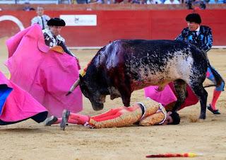 Bullfighter killed in Spain