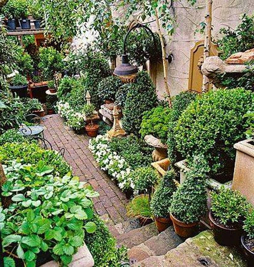 Ideias inspiradoras para pequenos jardins design innova for Small area planting ideas