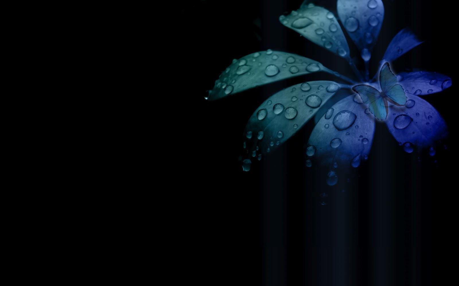 Wallpapers - HD Desktop Wallpapers Free Online: Flower ...