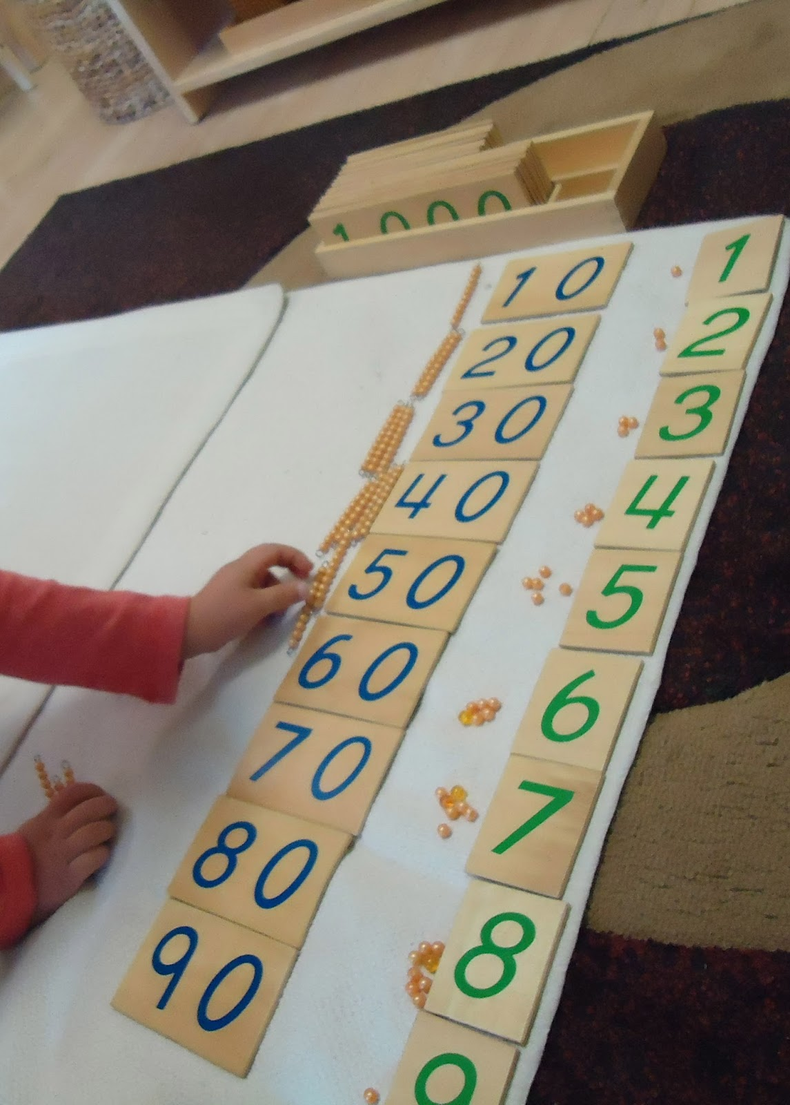montessori function of words paper To function as an observer,  and see her words on paper  observing, recording, and reporting children's development.