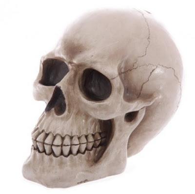 https://lunamarket.pl/duza-czaszka-skarbonka