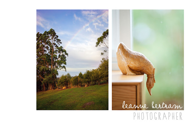 rainbow, view, teak, wood carving, duck, scandi interiors
