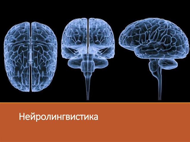 наука нейролингвистика что это