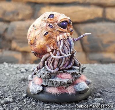 Octopus Meat