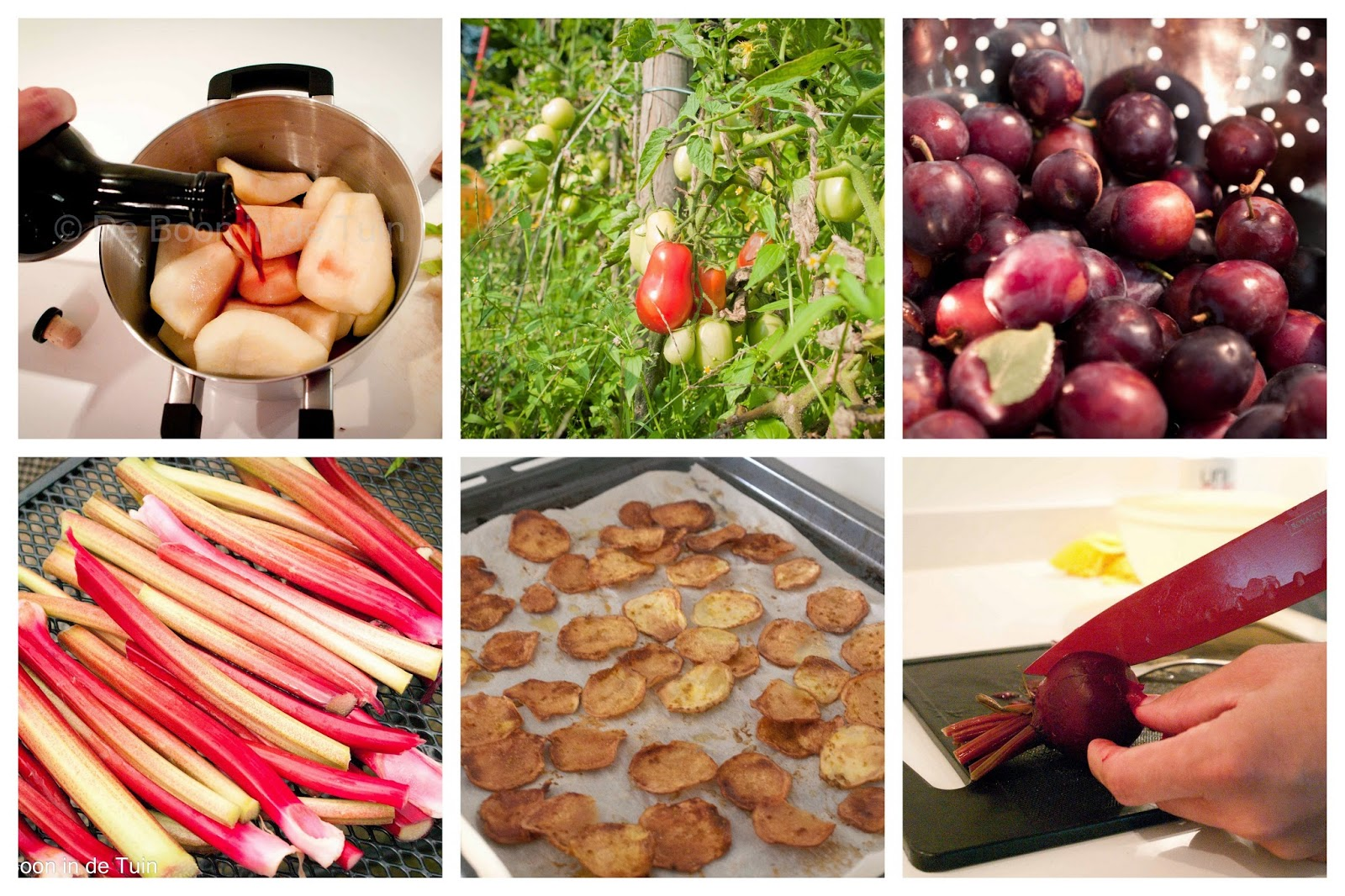 recepten eten uit de volkstuin moestuin