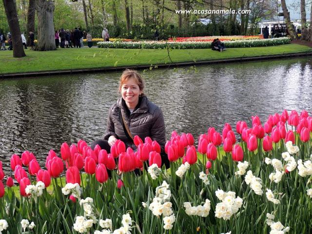 Primavera Keukenhof 2016 - Holanda