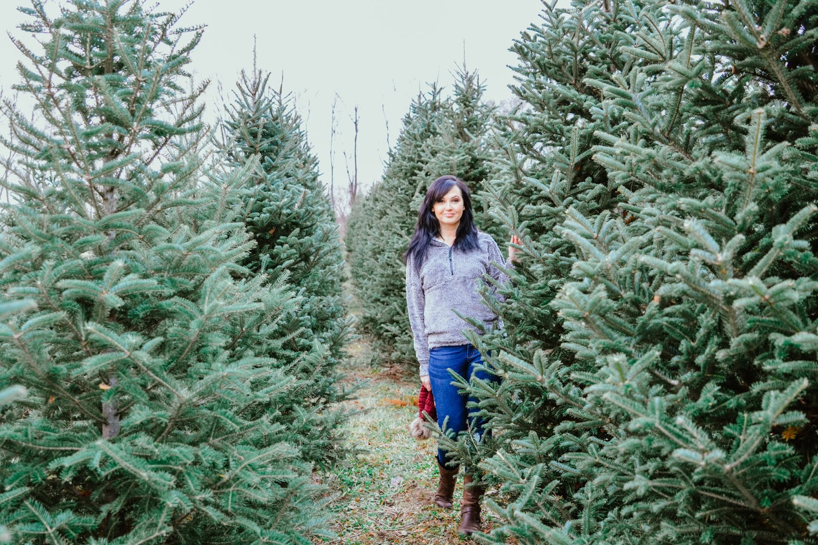 Pinecrest Tree Farm