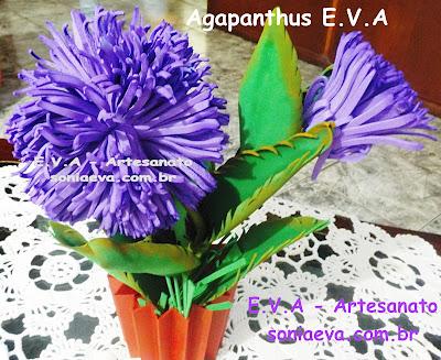 Flor Agapanthus E.V.A