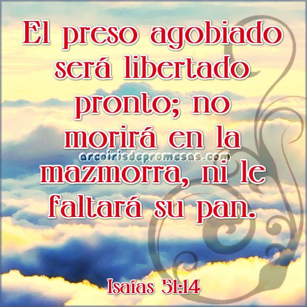 una promesa de libertad devocionales cristianos