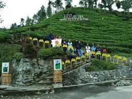 Kebun teh Sirah Kencong