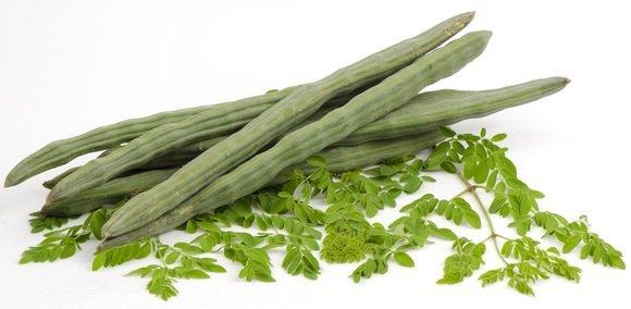 Top 6 Health Benefits Of The Moringa Plant [_Moringa oleifera_]