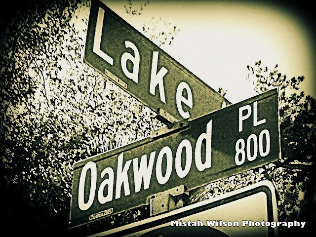 Lake Avenue & 800 Oakwood Place, Pasadena, California by Mistah Wilson Photography