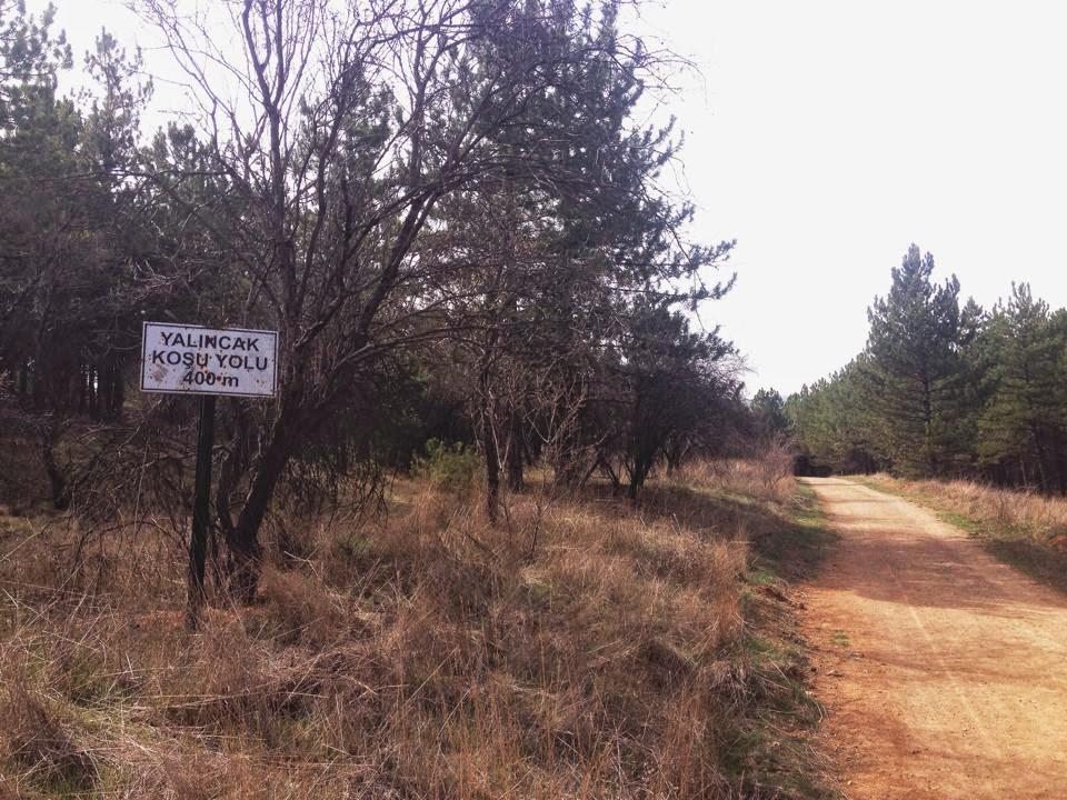 uzun mesafe: METU Trail Run Yarış Raporu