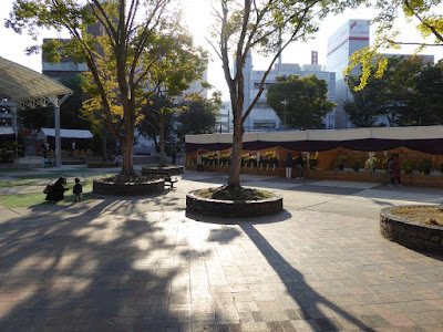 ひらかた菊花展 (岡東中央公園)