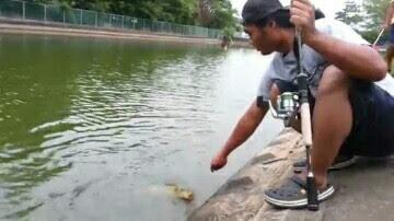 cara mancing ikan mas
