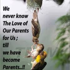 Cute And Lovely Quotes For Parents: we never know the love of our parents for us;
