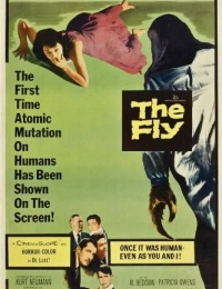 The Fly   Bmovies