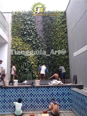 tukang taman surabaya. desain taman surabaya.vertical garden, taman vertikal
