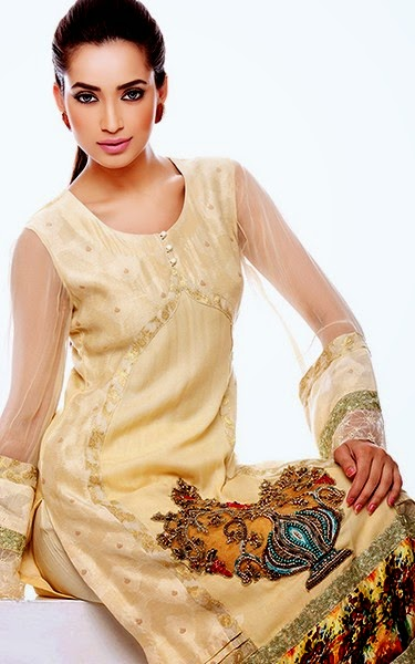 Luxurious Dresses in Pakistan