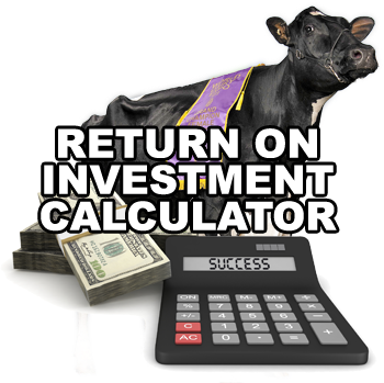 Raising Cattle For Profit - Tips On How It Can Give You High Return Of Investment