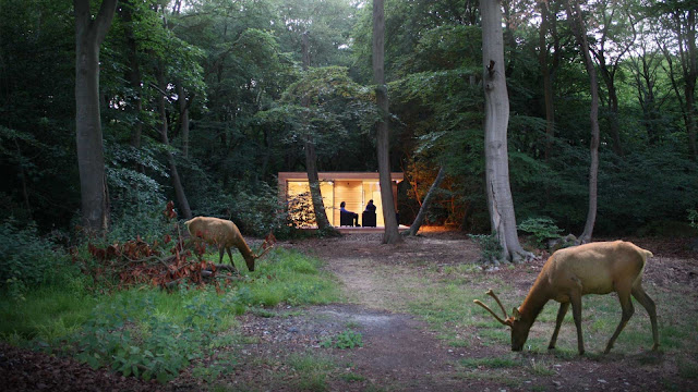 выход в лес через террассу
