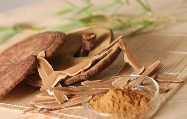 sử dụng nấm linh chi chăm sóc sức khỏe