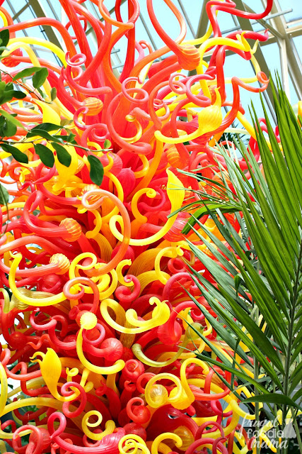 You can find various sculptures & artwork displays from Chihuly all throughout the conservatory, the botanical gardens, & the showhouse at the Franklin Park Conservatory in Columbus, Ohio.