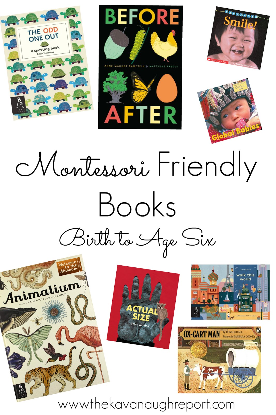 montessori friendly books from birth to six