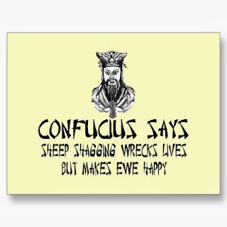 Funny Confucius sayings collection picture