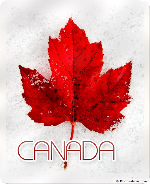 Best Collection Of Canada Day Wallpapers