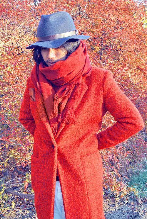 Jardin botanique Montréal autumn automne fall maple leaves Ben Liu