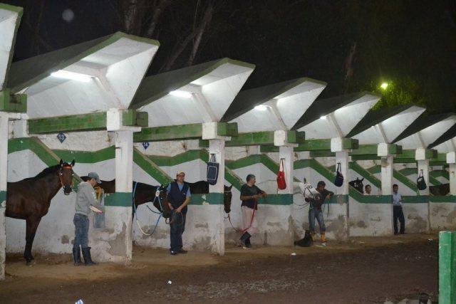 Mejoras Hipódromo La Plata Boxes Iluminación