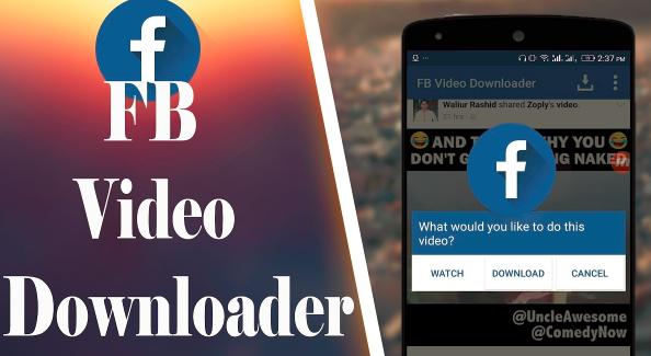 facebook video downloaden