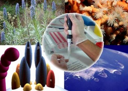 Penjelasan Lengkap Dampak Positif dan Negatif Bioteknologi