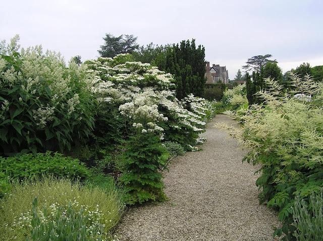 biały ogród w Loseley Park
