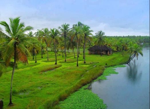 केरल का सुंदर दृश्य