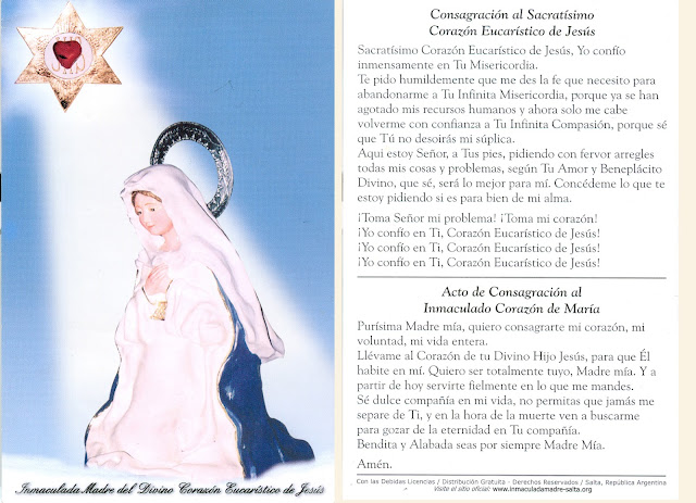 Resultado de imagen para inmaculada madre del divino corazón eucarístico de jesús