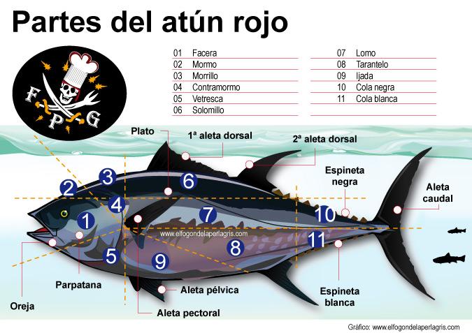 Despiece, partes y ronqueo del atún