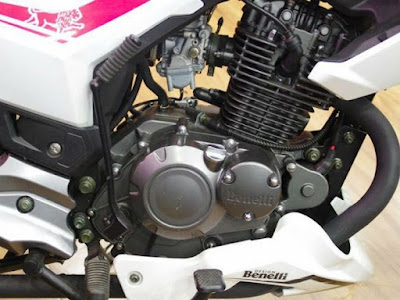 2016 Benelli TNT 15 engine