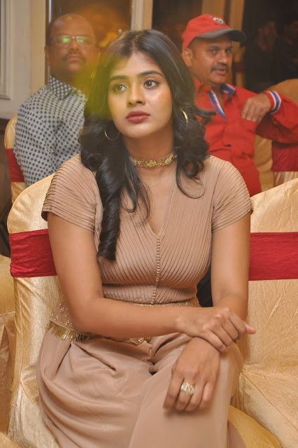 hebah patel recent stills at a press meet