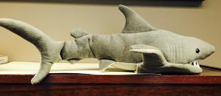 Shark Storytime, shark puppet
