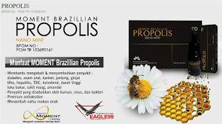 Propolis Moment Brazilian Nano Mint Murah