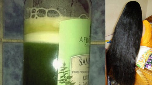 100% Tested Recipe: This Shampoo Will Stimulate Your Hair Growth and Return its Natural Shine