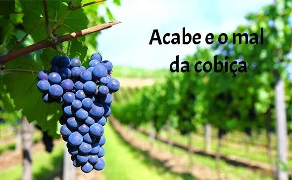 nabote, vinha, evangelico